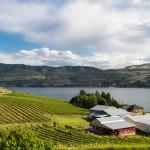 lake chelan winery, things to do in lake chelan, lake chelan wine tour,